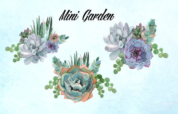 Watercolor Succulents Clip Art example image 2