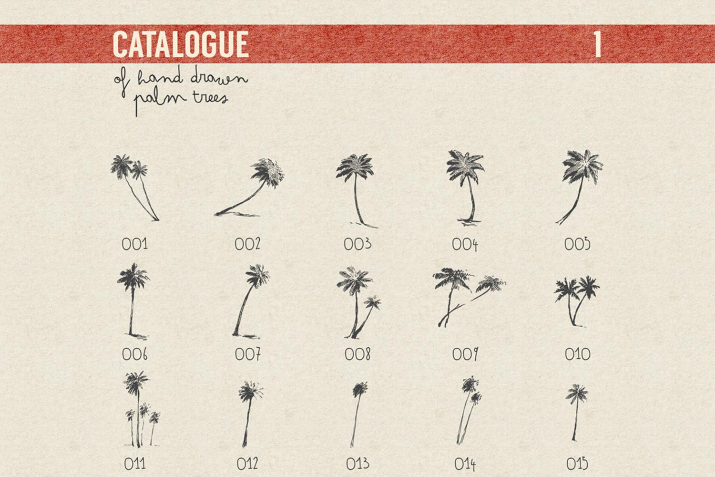 227 hand drawn palms + BONUS example image 9