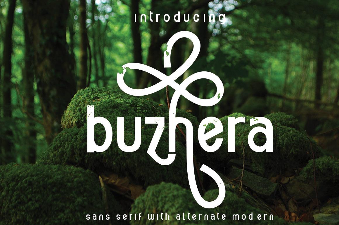 buzhera example image 2