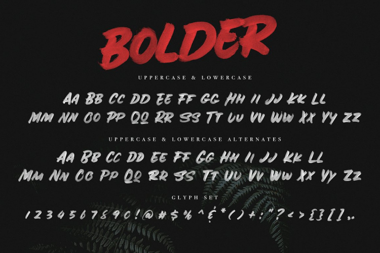 BOLDER - Smallcaps SVG Brush Font example image 2