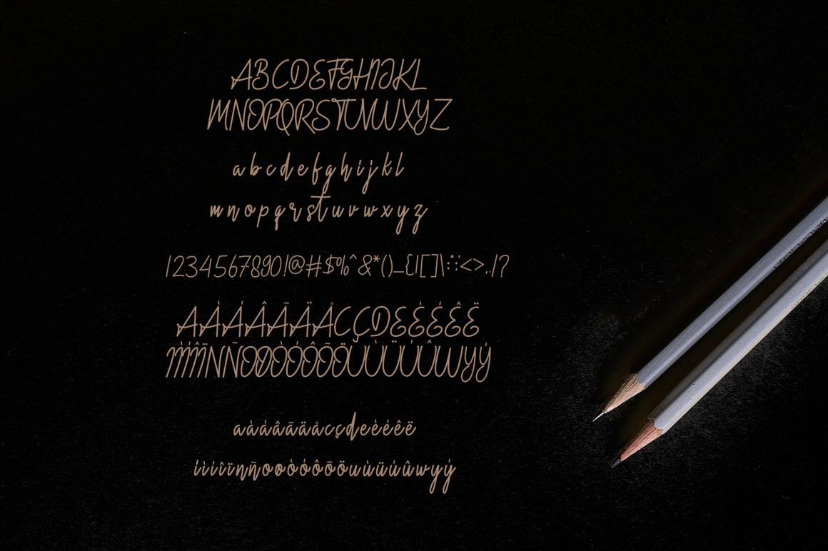 Hidario Signature Font example image 6