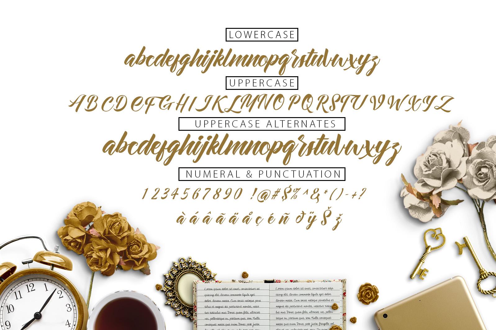 Allita Script example image 4
