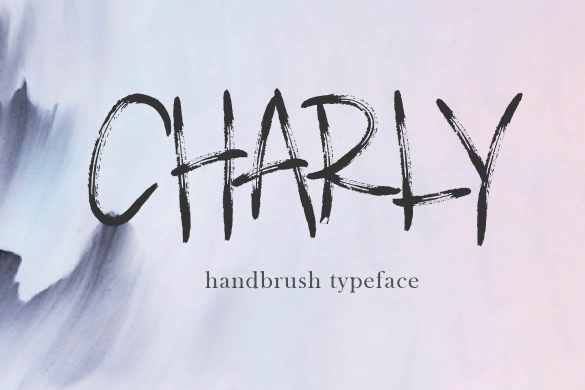 CHARLY example image 1