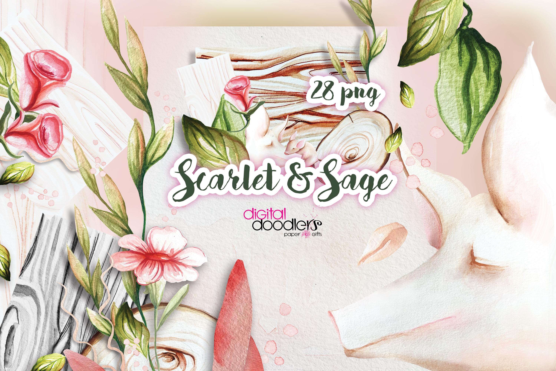 Scarlet & Sage example image 8