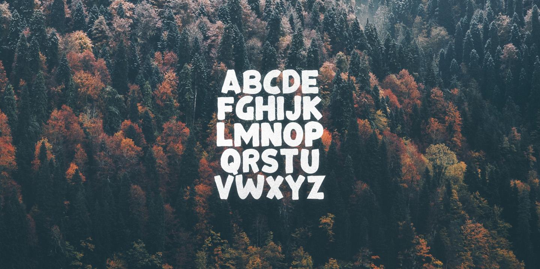 Bonfire Typeface example image 2