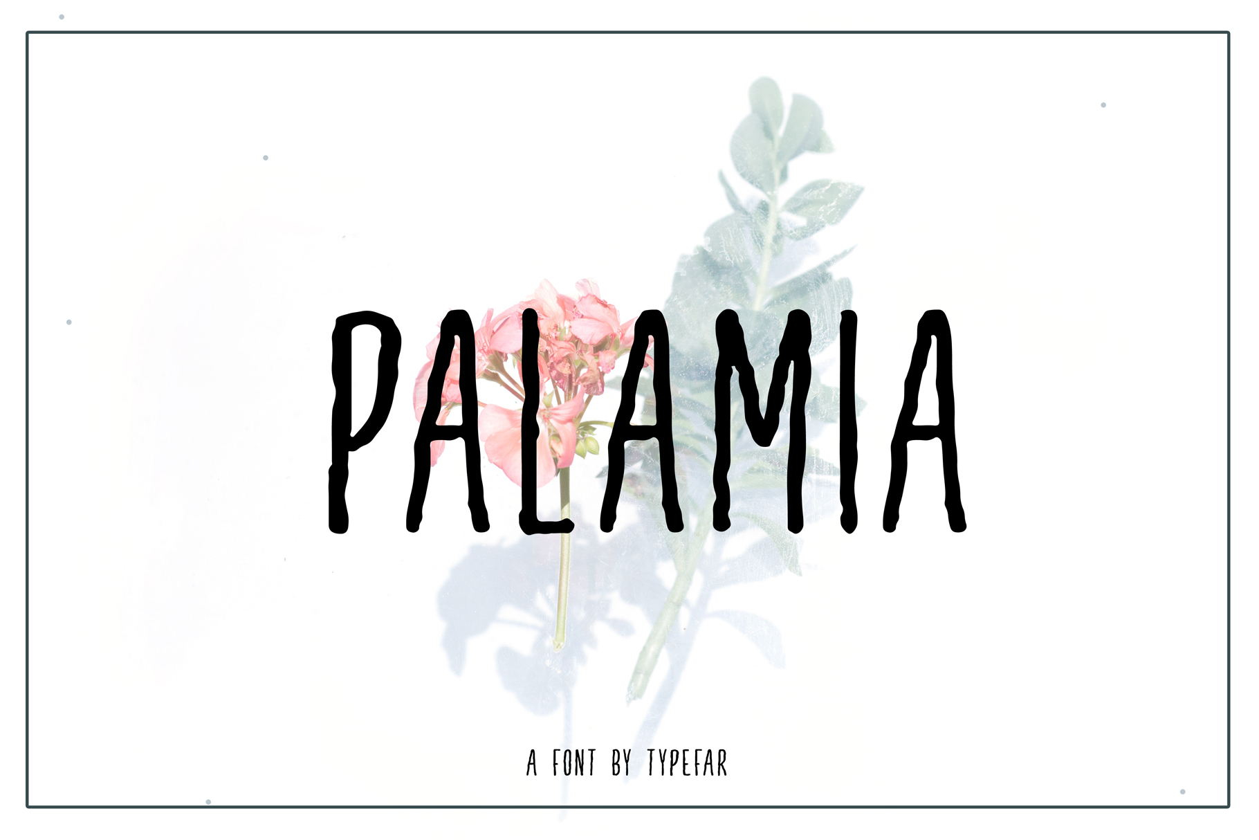 Palamia Handwritten Font example image 1
