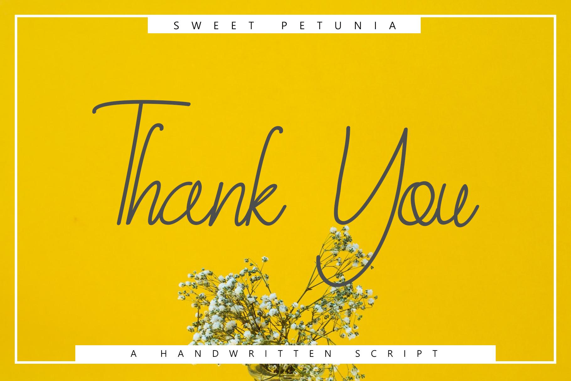 Sweet Petunia Handwritten Script example image 7