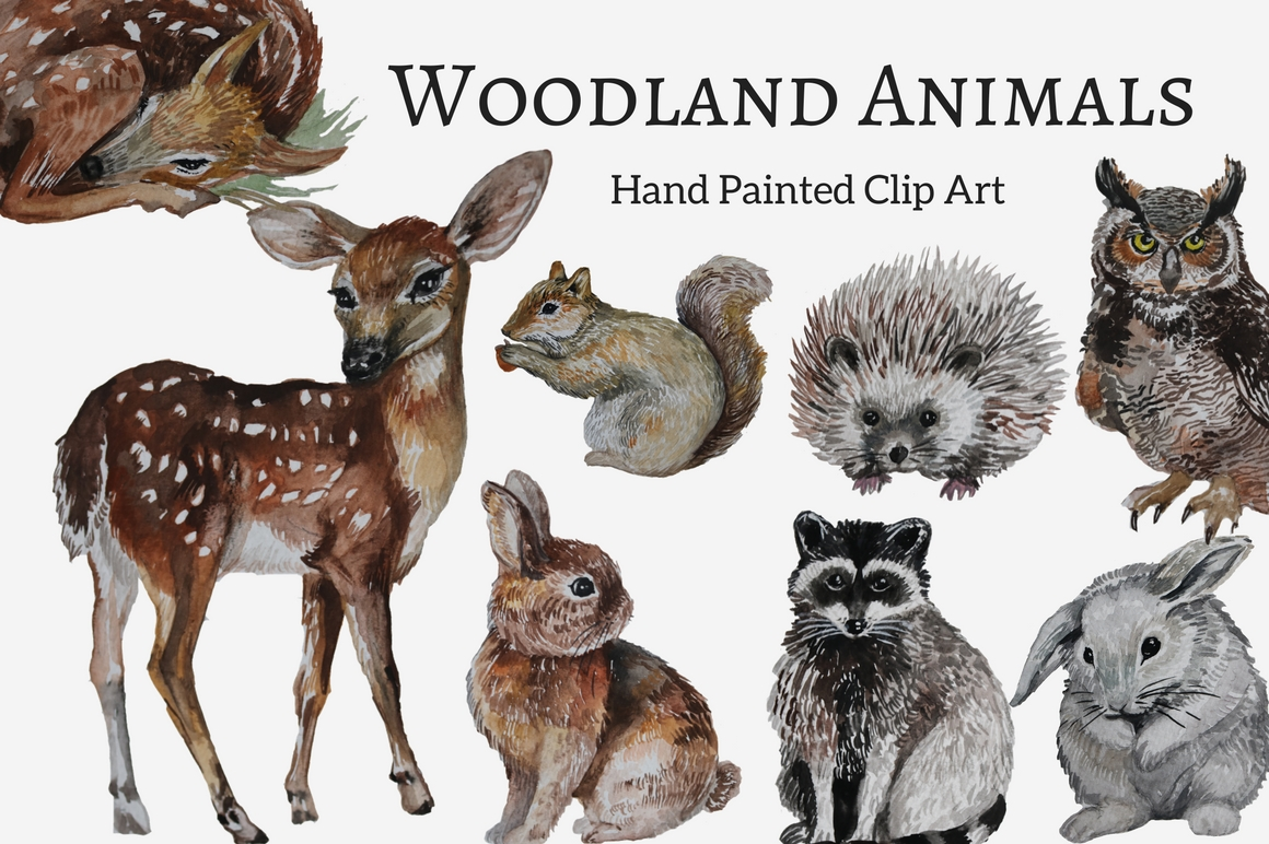 Woodland Animals Hand painted Clip Art Set (57890 ...