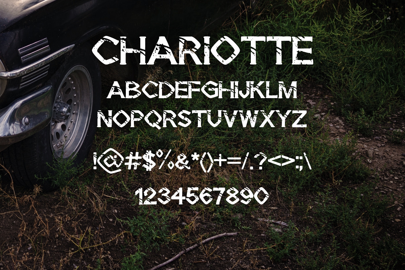 Chariotte example image 2