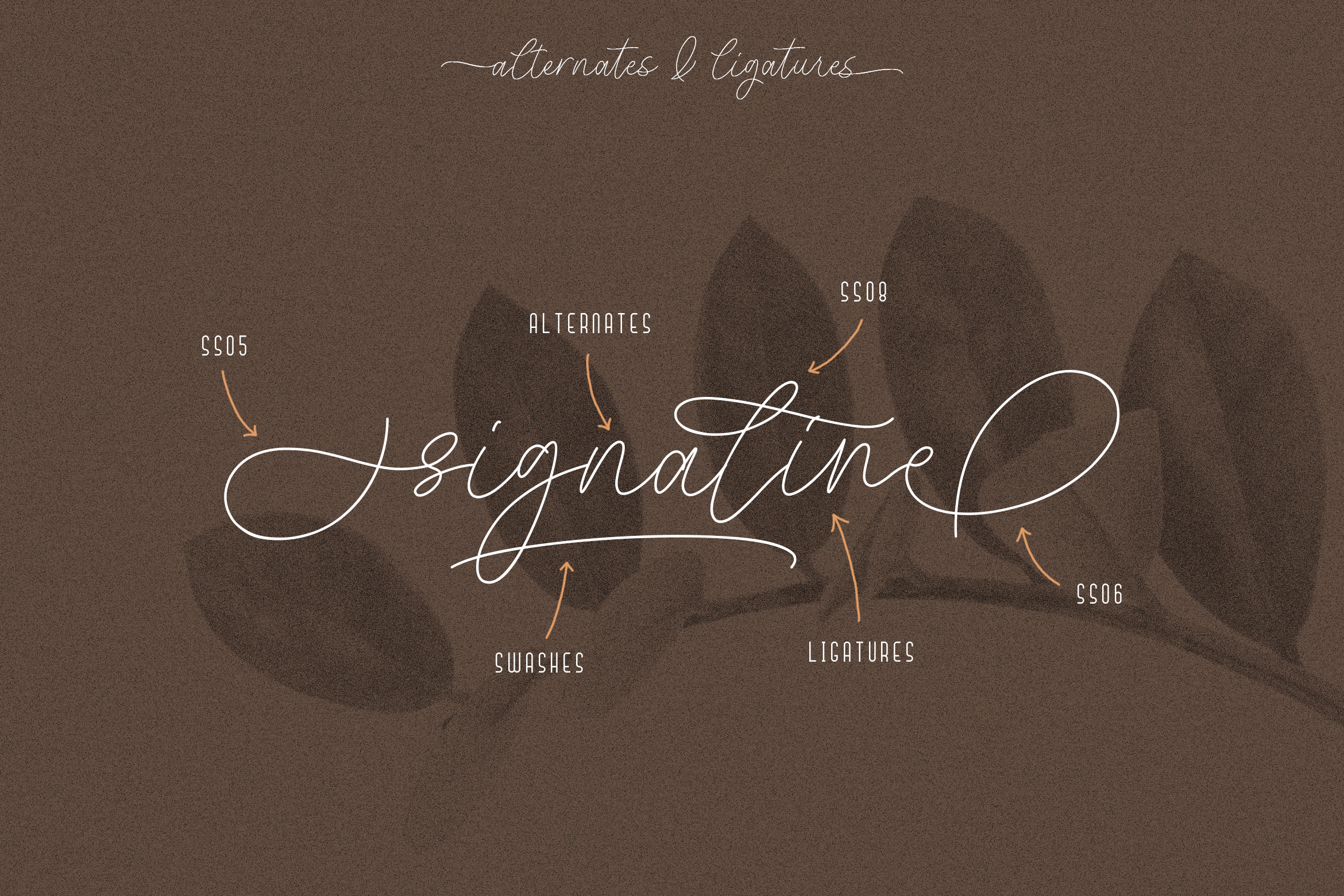 Signaline // Font Duo Extras example image 9