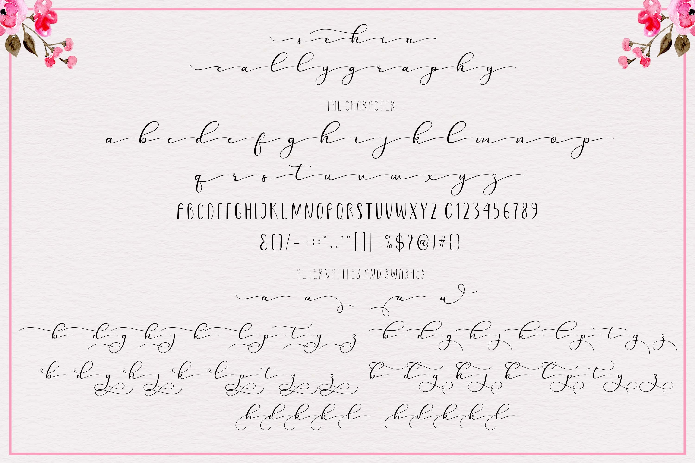 Sehia Script Calligraphy & Monoline example image 9