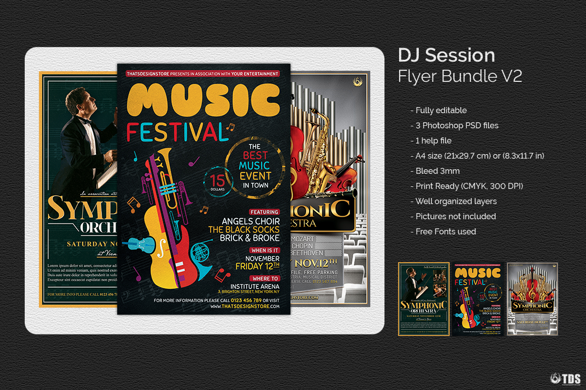 Special Orchestra Flyer Bundle example image 2