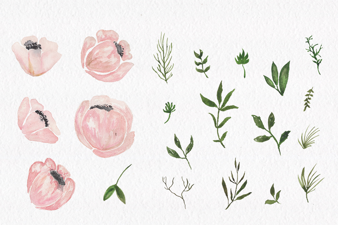 Gray and Pink Blooming. Watercolour clipart collection. example image 11