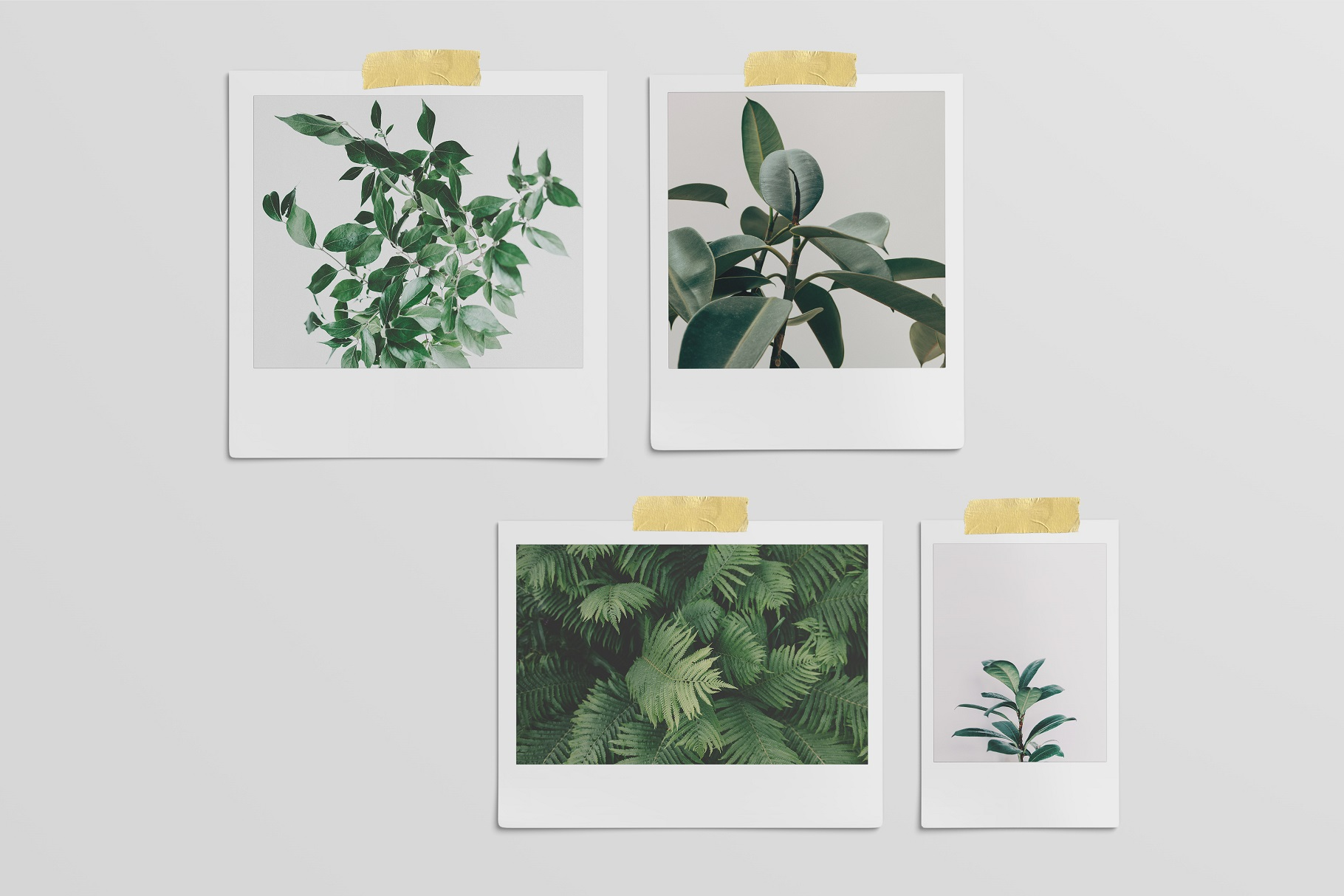 Polaroid Mockups Set example image 11