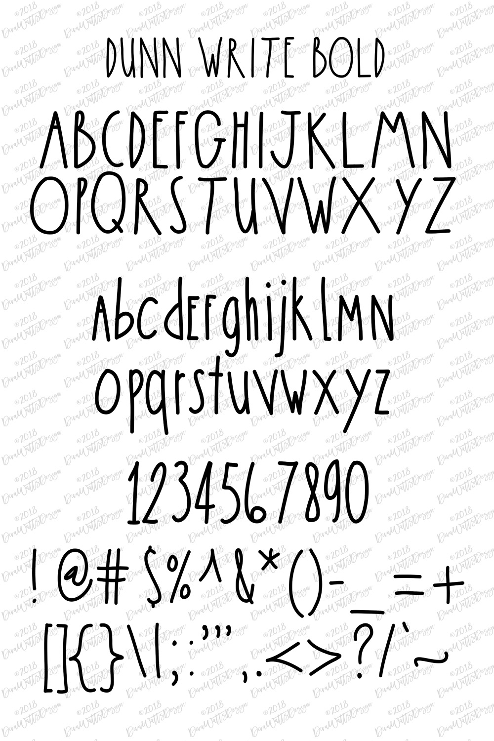The Dunn Write Farmhouse Skinny Font Collection example image 3
