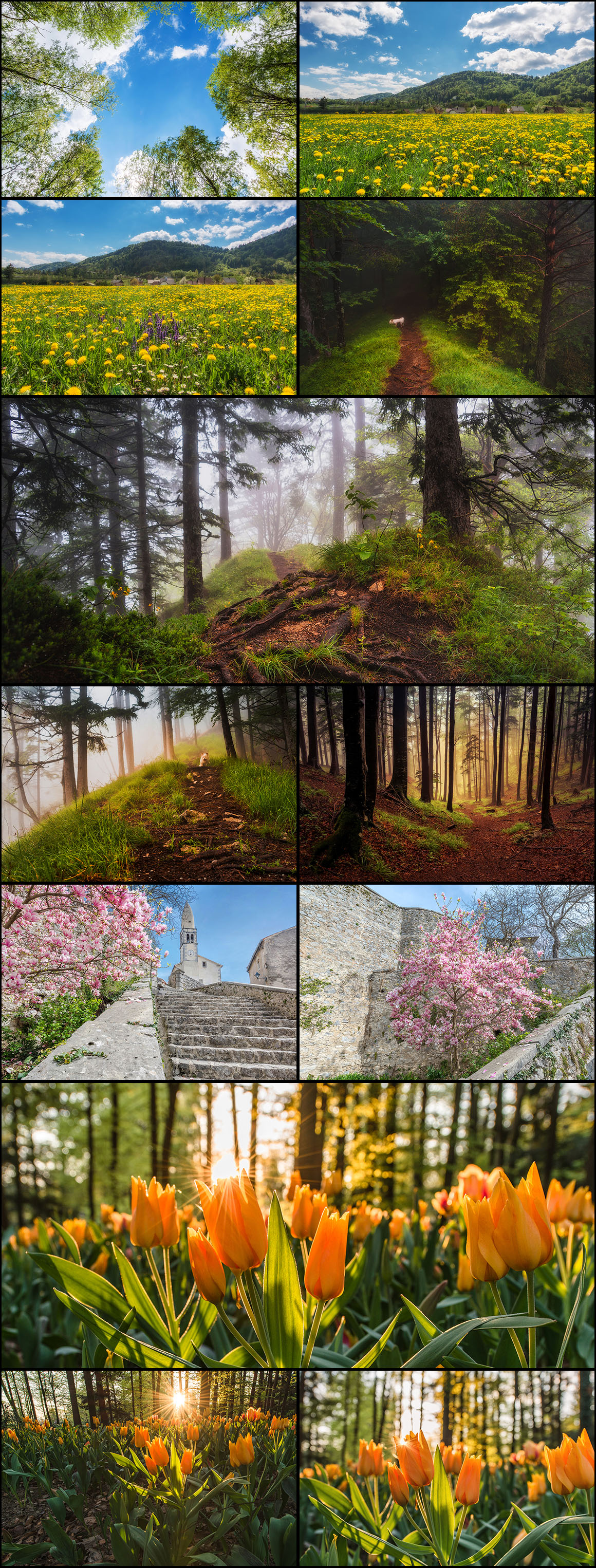 Ultimate Photo Bundle 2016 from DreamyPixel – 700+ Images example image 29