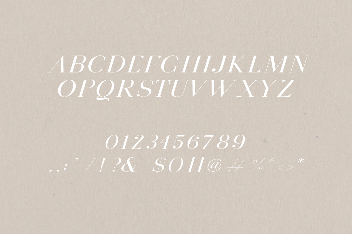 Montauk | Serif + Bonus Vectors example image 2