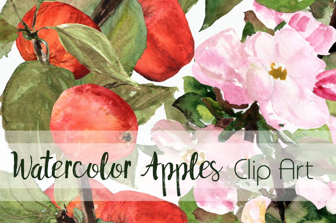 Watercolor Apples ClipArt Collection example image 1