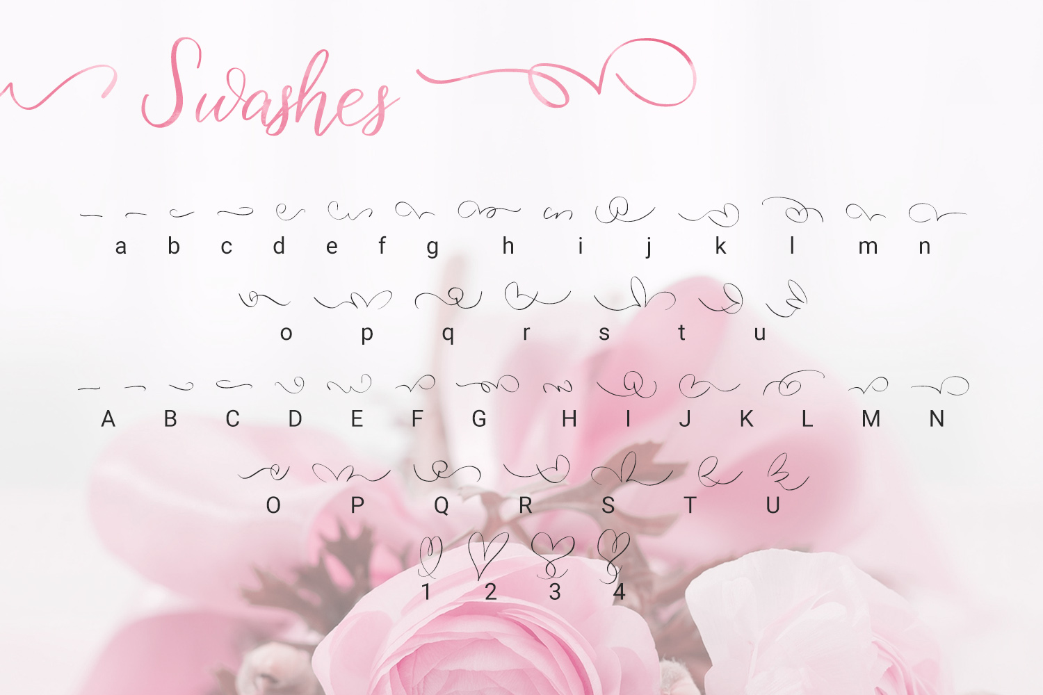 Birdy Roses | Script font and Swashes example image 11