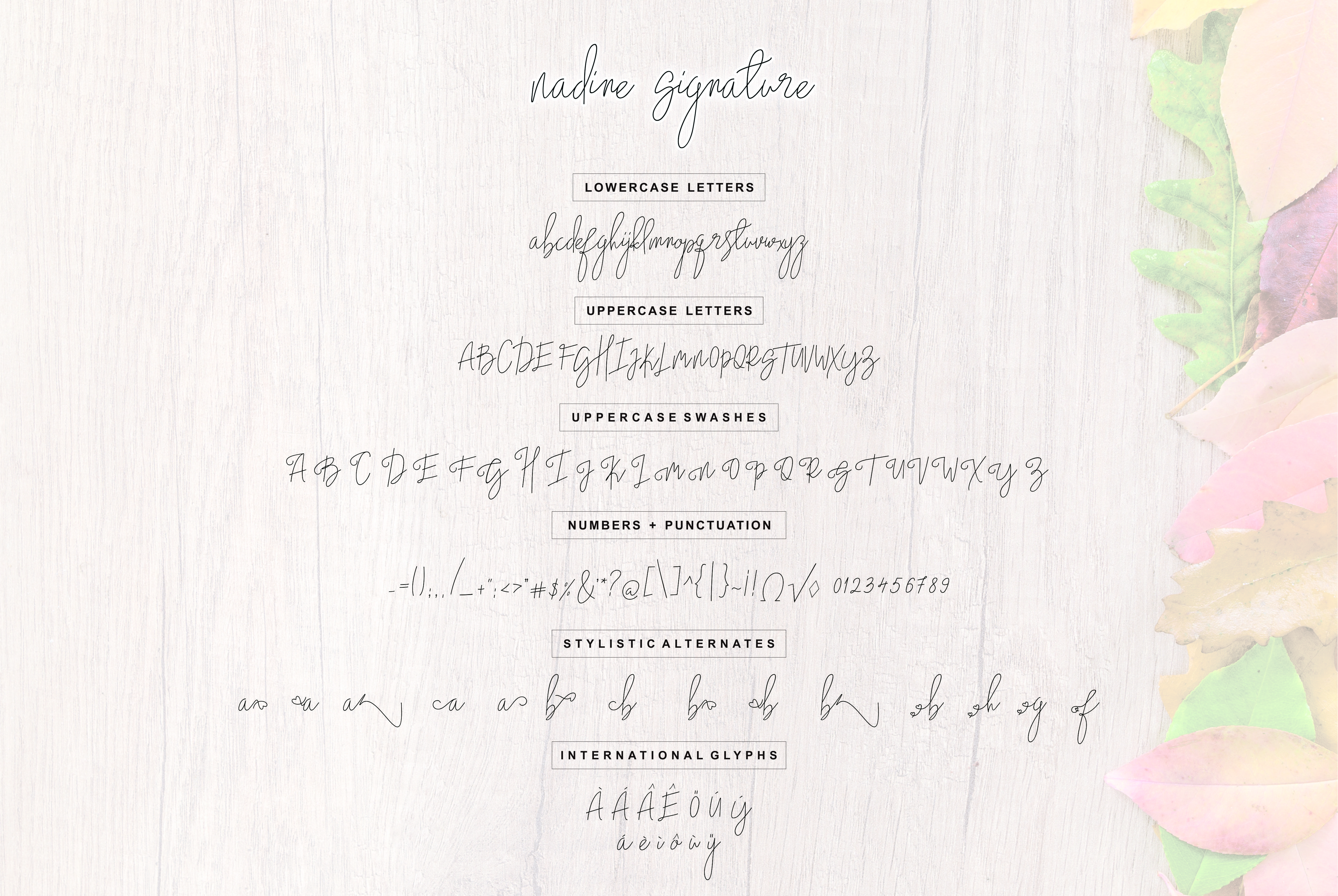 nadine example image 6