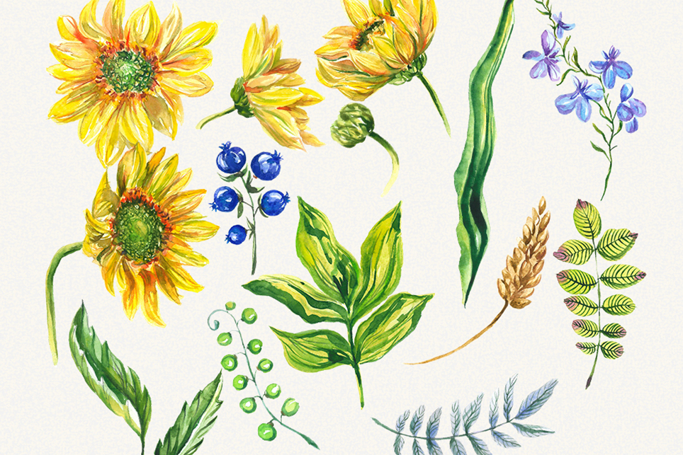 Sunflower clipart, sunflower watercolor clipart, floral example image 2