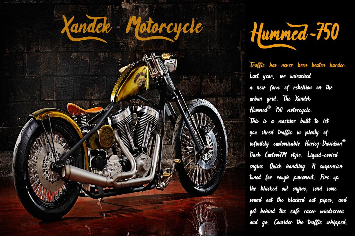 Xandek example image 2