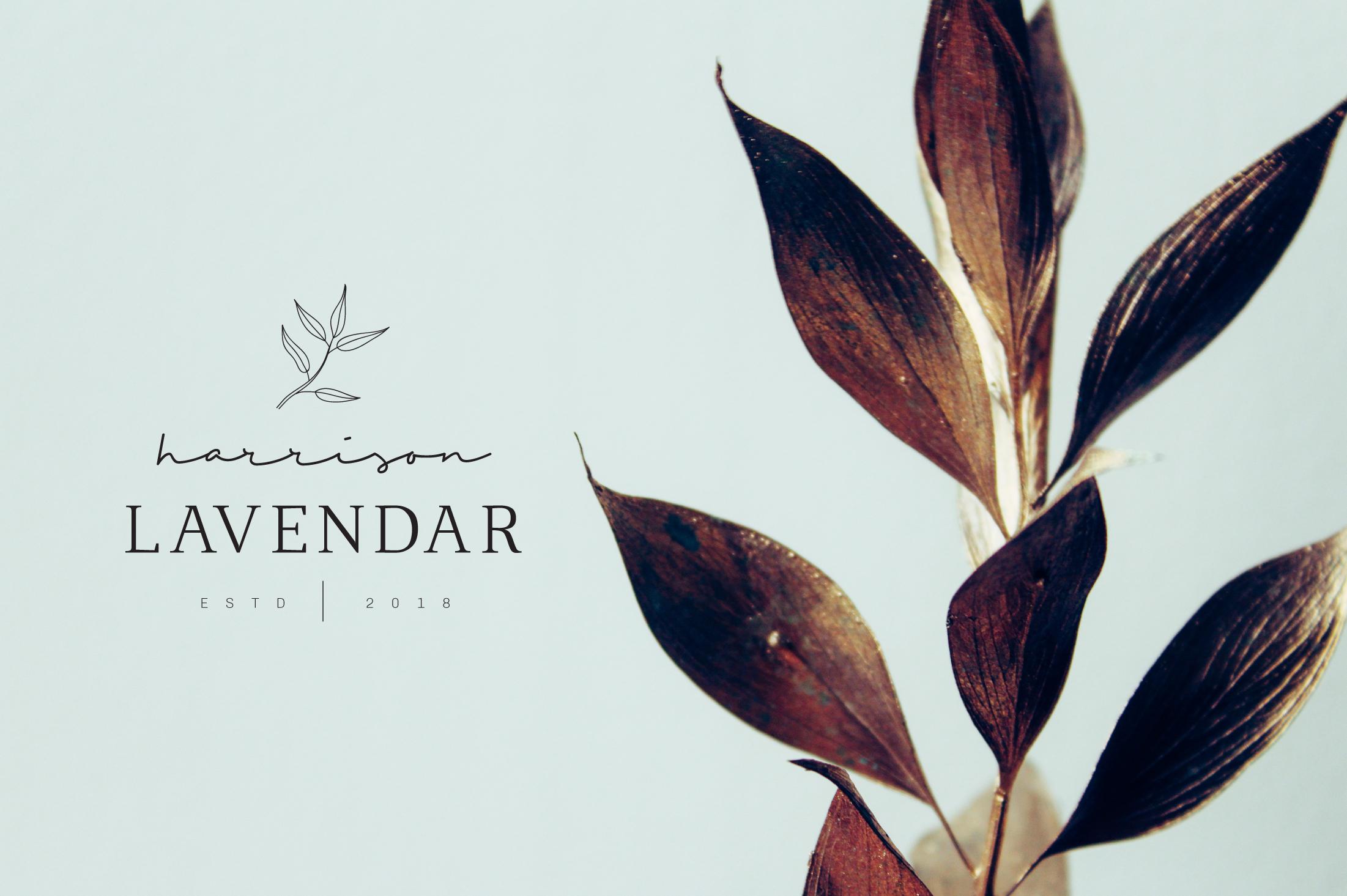 Feminine Branding Premade Logos V01 example image 2