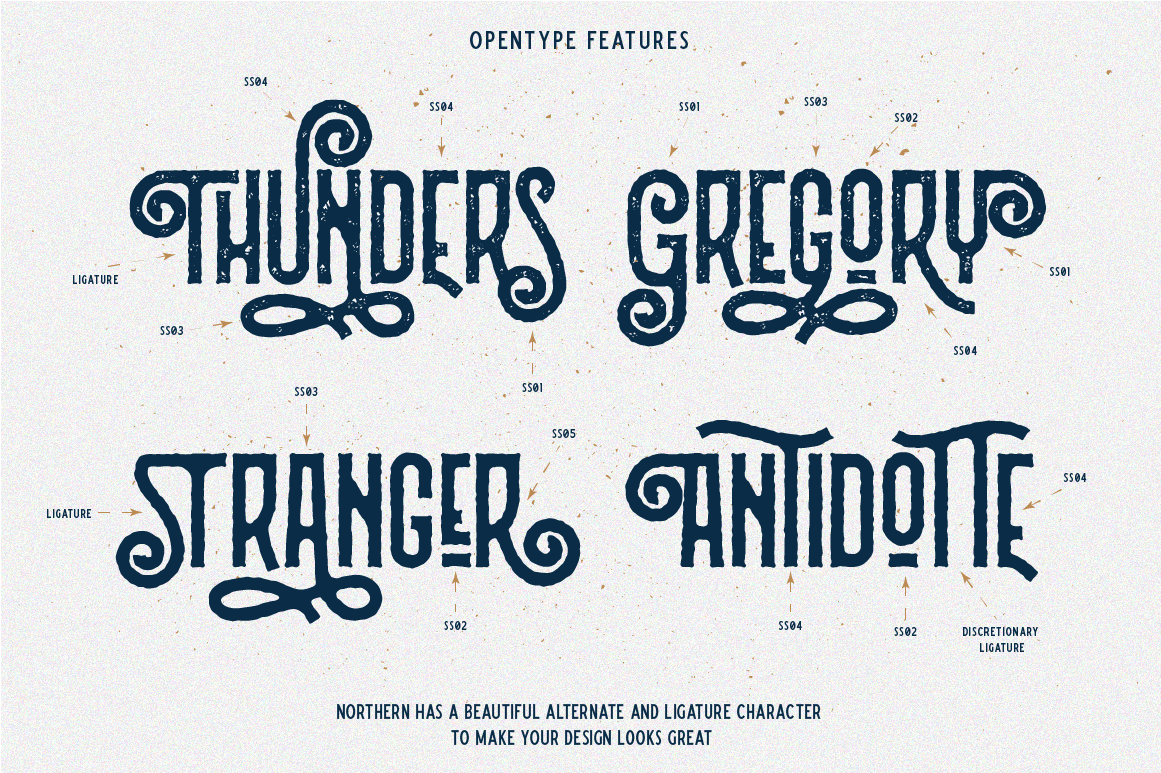 Northern 5 Fonts with Extras example image 4