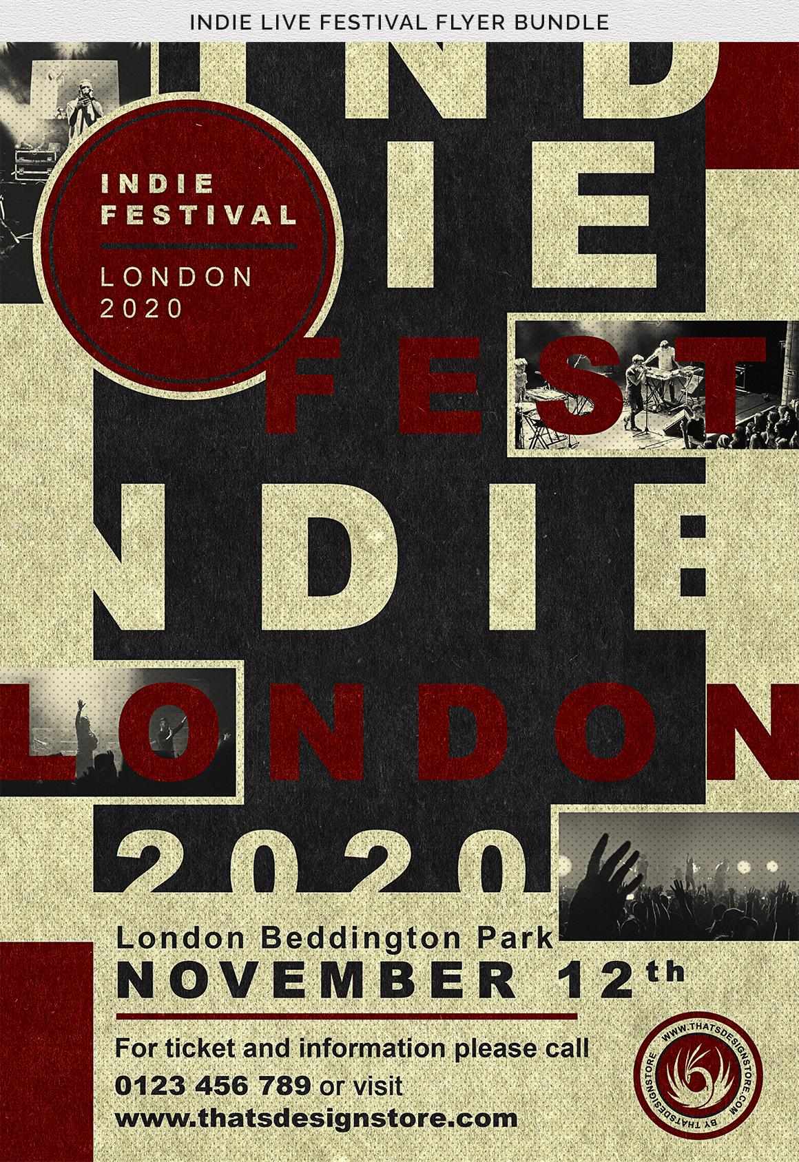 Indie Live Festival Flyer Bundle example image 10