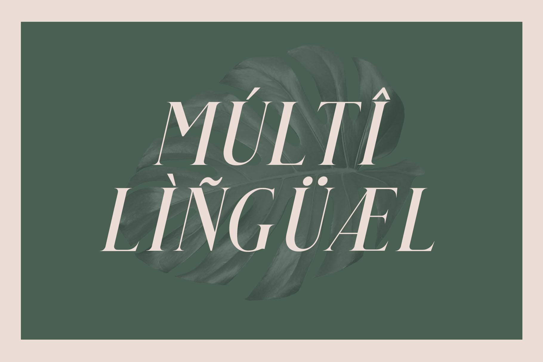 Qualey - Elegant Serif Font example image 10