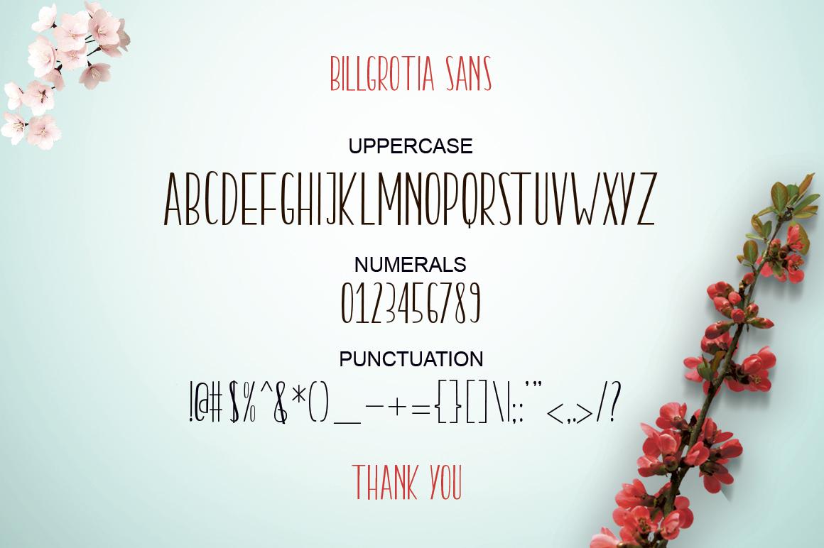 Billgrotia Script example image 16