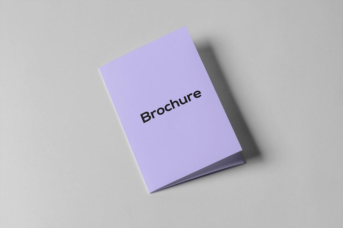 Brochure Mock up example image 2