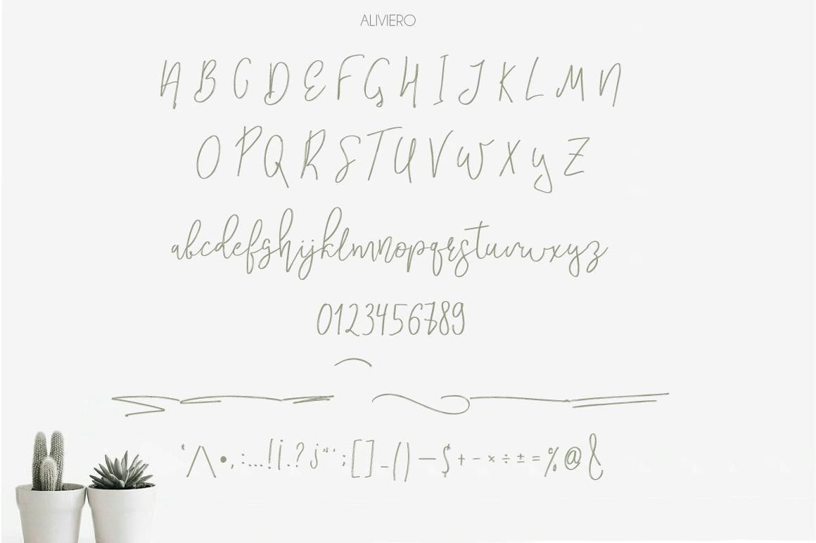 Aliviero Script example image 5