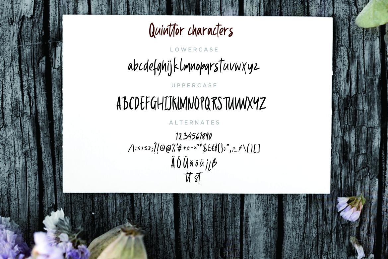 Quinttor Sans Serif example image 7