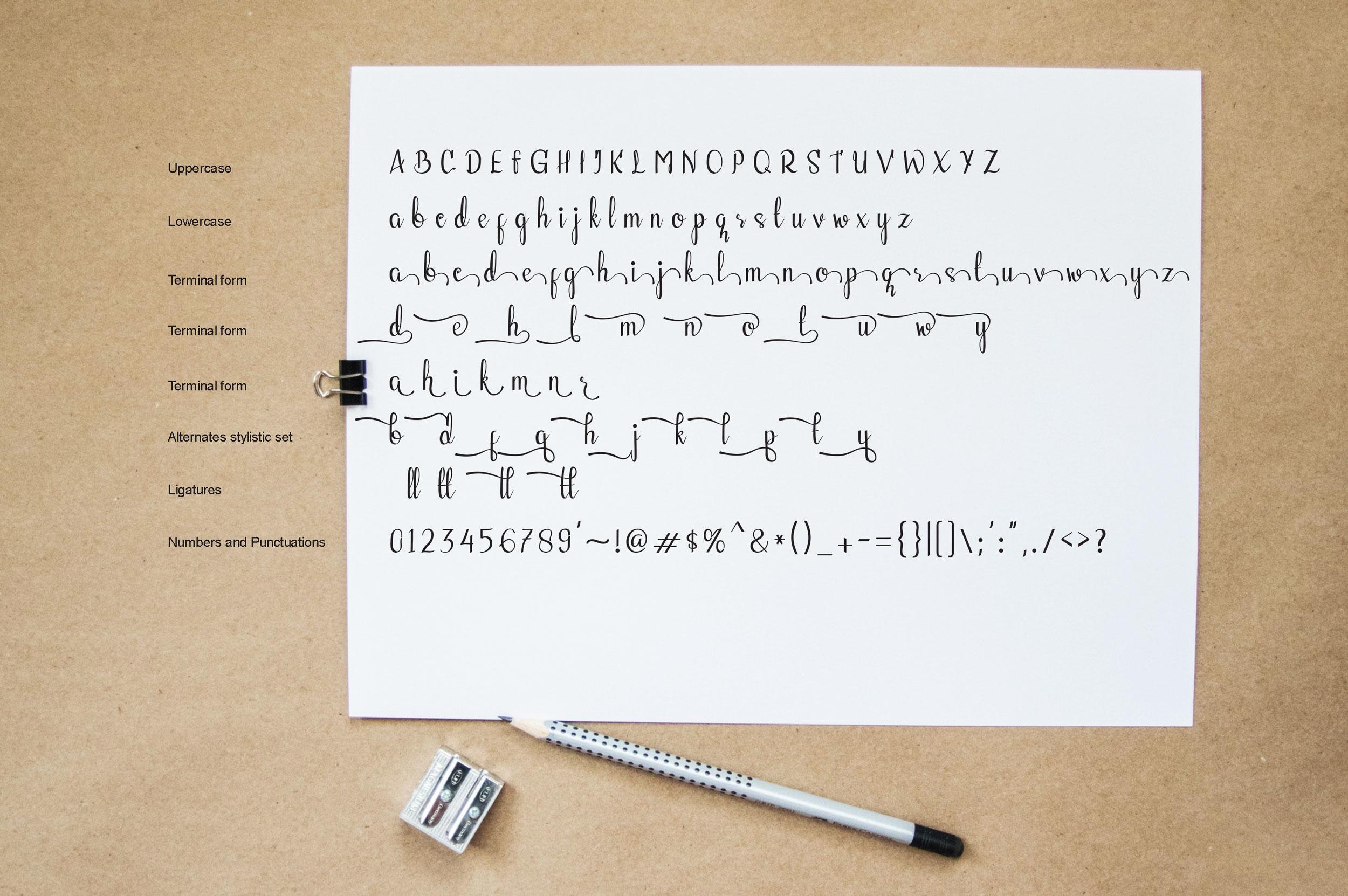 Fellant - Script Font example image 5