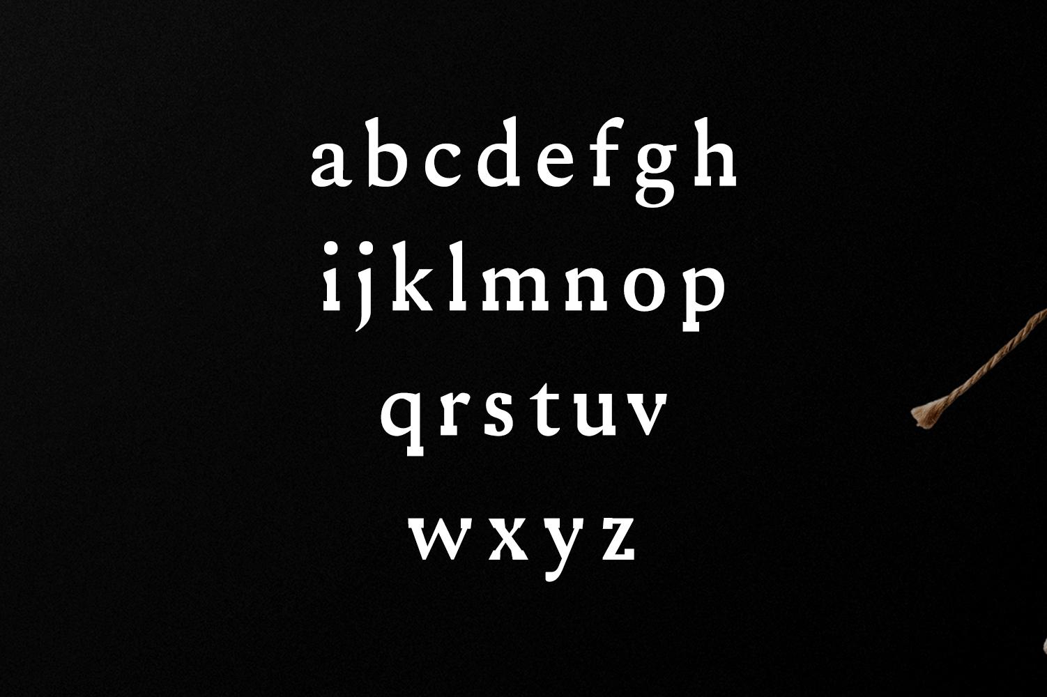 Ireene Serif 3 Font Family Pack example image 4