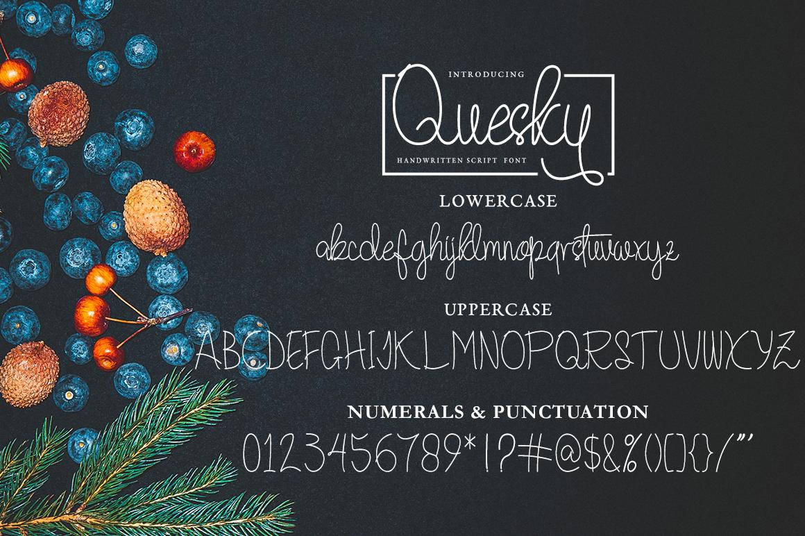 Quesky Handwritten Script example image 6