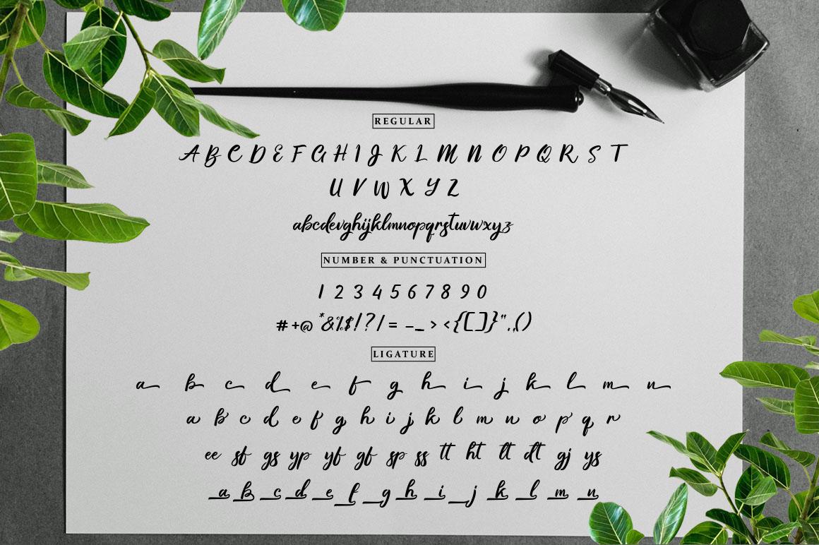 Gallisia Design Script example image 12