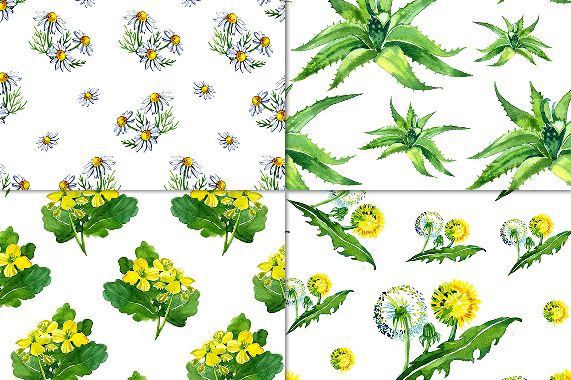 Watercolor medicinal plants set example image 2