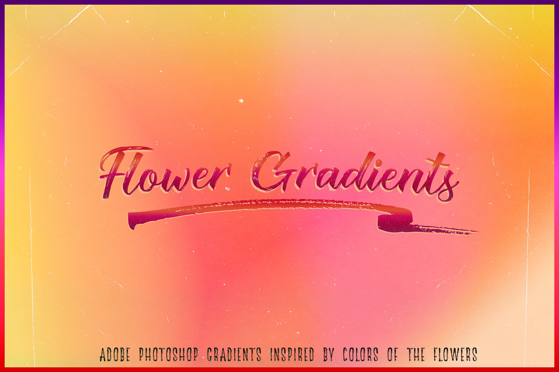Flower Gradients Pack example image 1