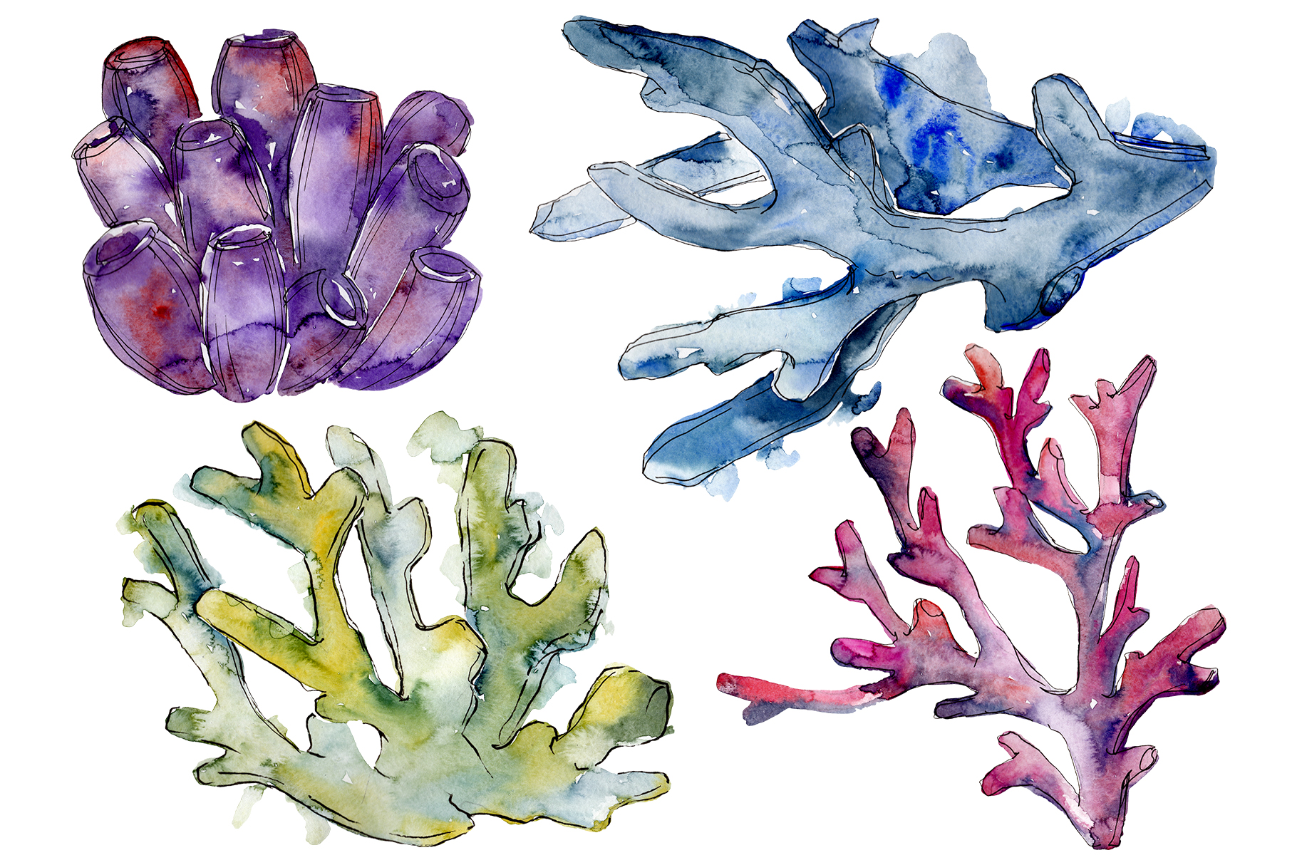 Corals seascape watercolor png example image 1
