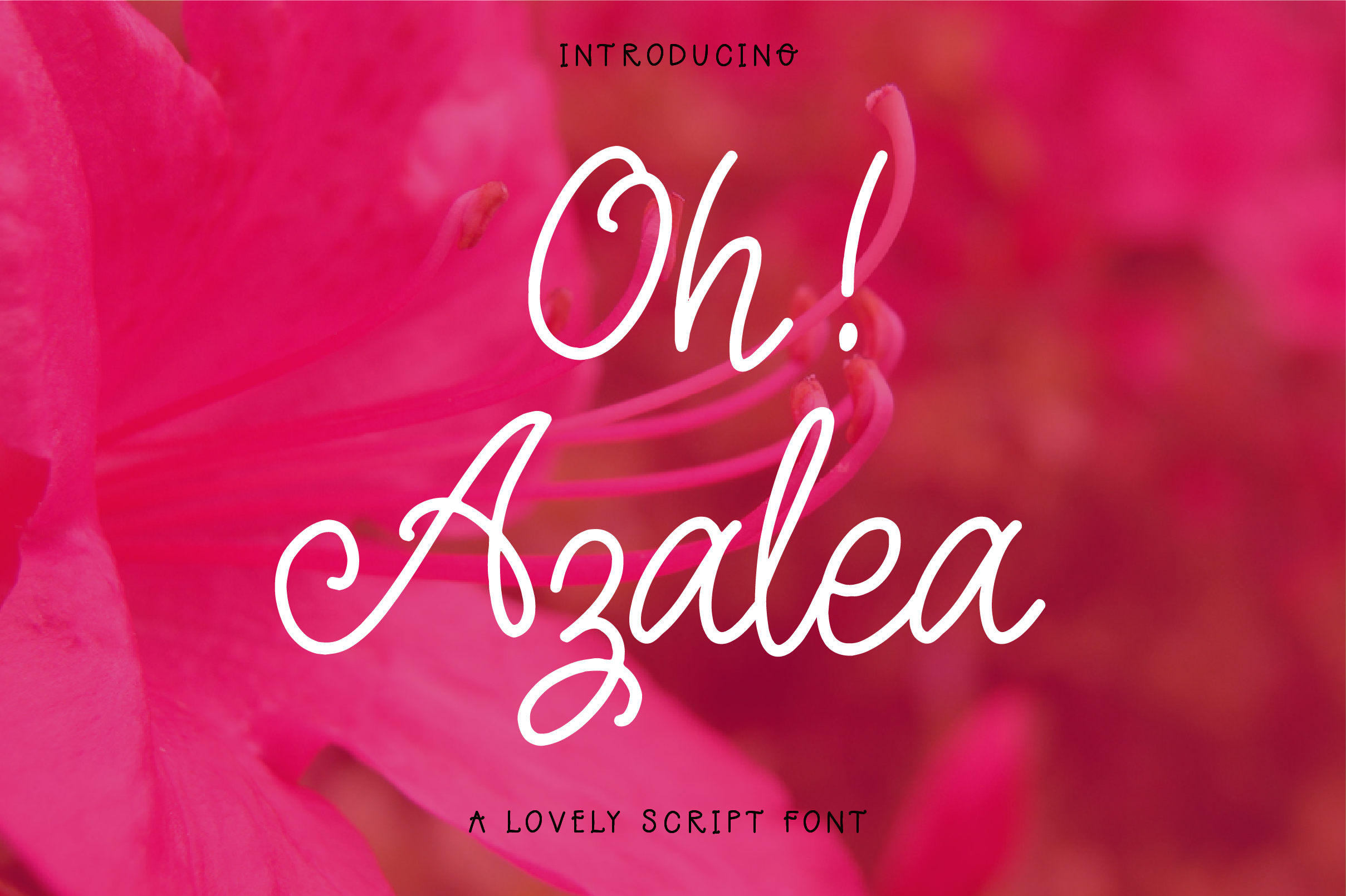 Oh Azalea example image 1