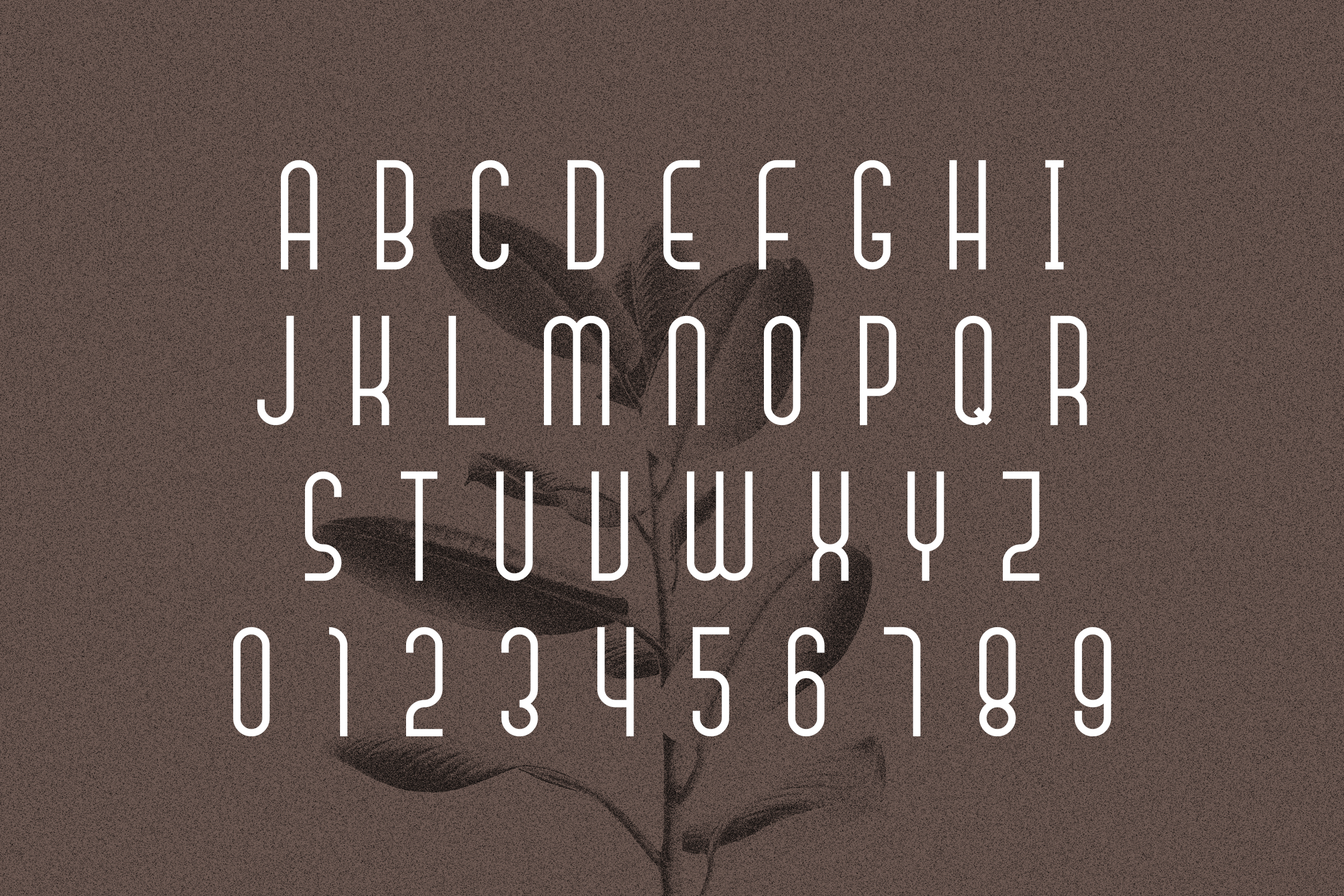 Signaline // Font Duo Extras example image 10
