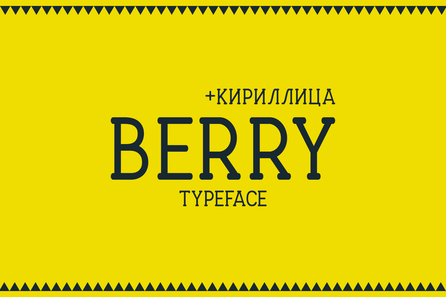 Berry Typeface example image 1