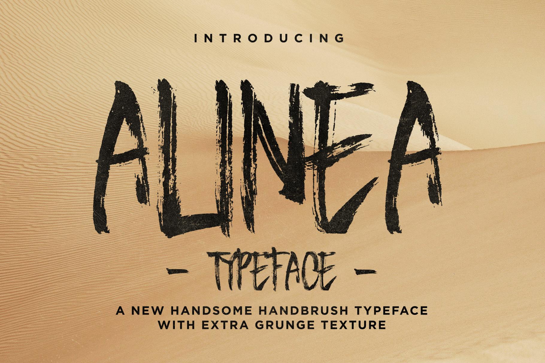 Alinea Typeface example image 1