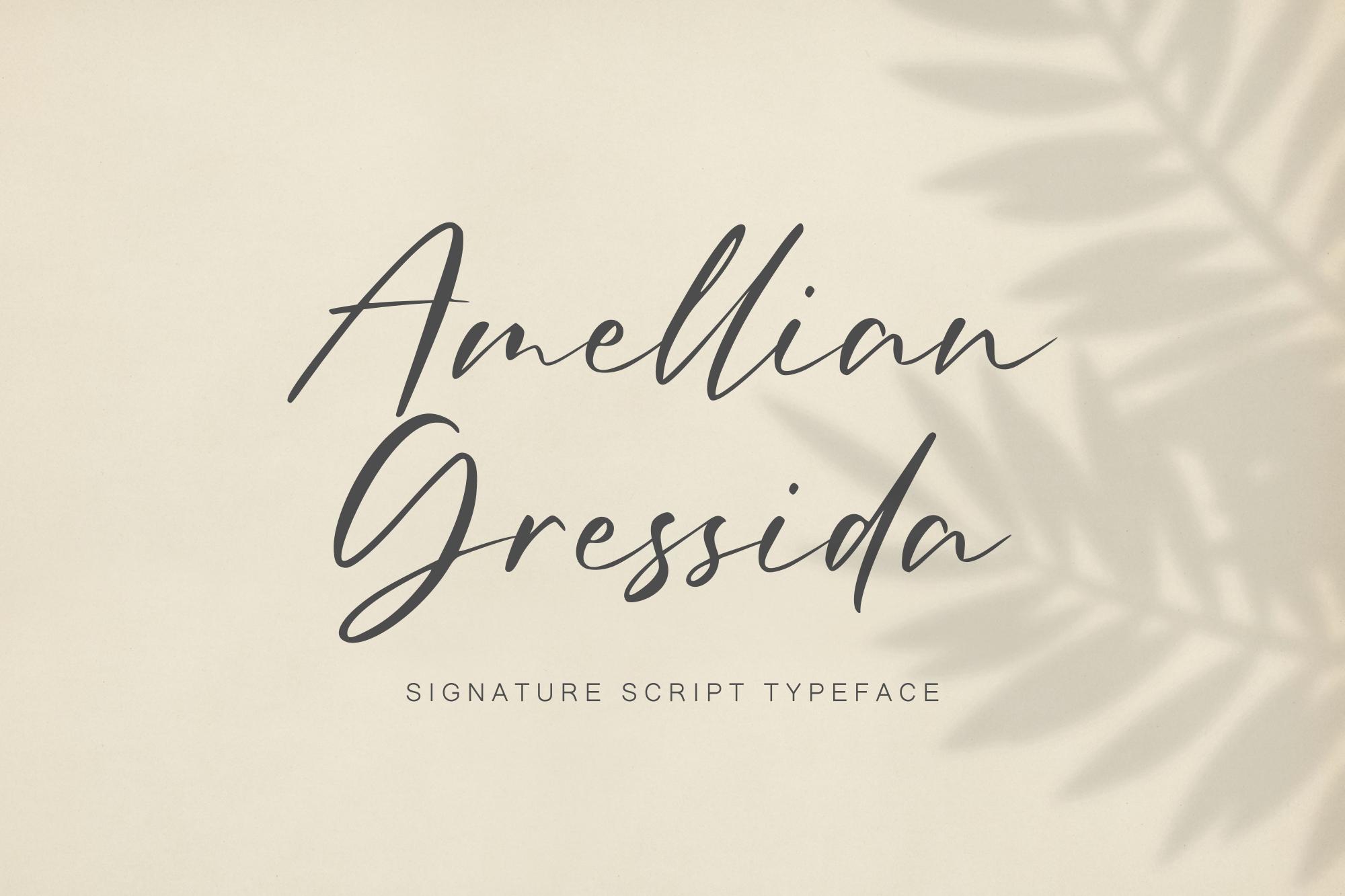 Amellian Gressida example image 1