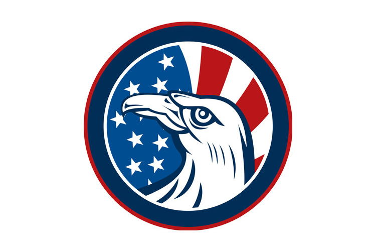 American eagle with stars and stripes flag example image 1