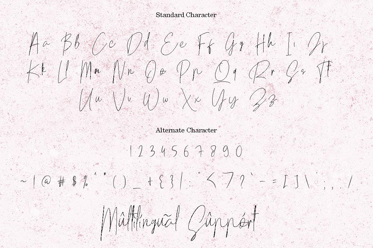 Mellati - Luxury Script Signature Font example image 16