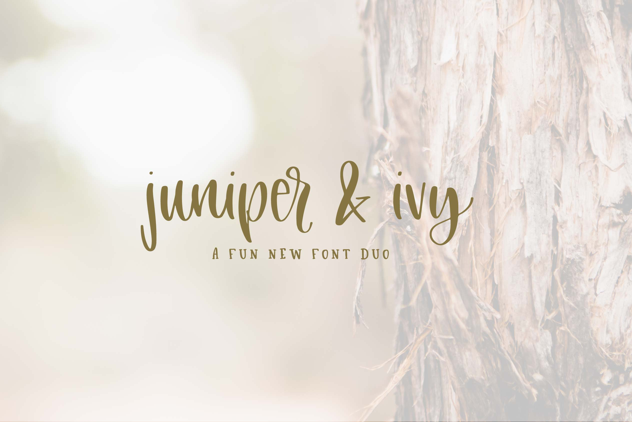 Juniper & Ivy example image 1