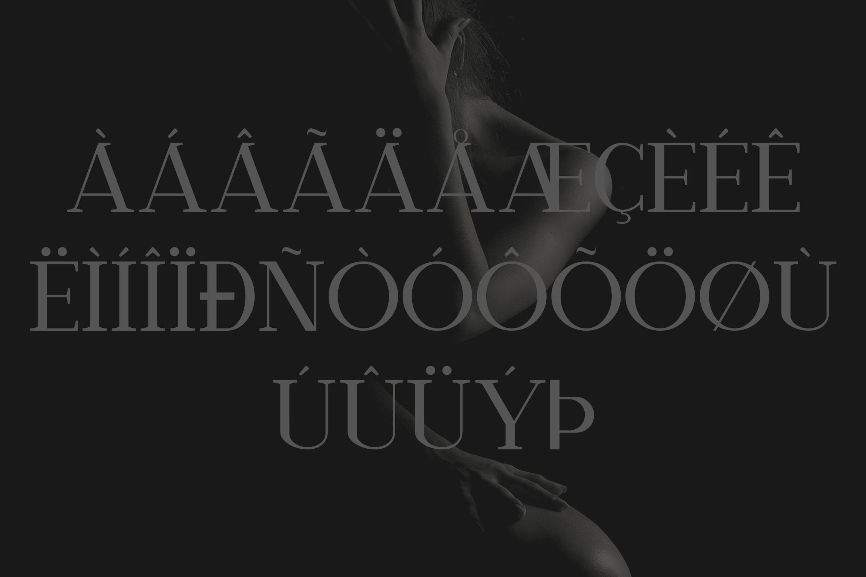 Nathanos - Serif Typeface example image 10